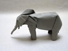 Diagrams: https://vallebird.files.wordpress.com/2016/12/elephant.pdf