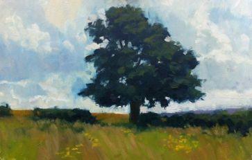 NHF oak