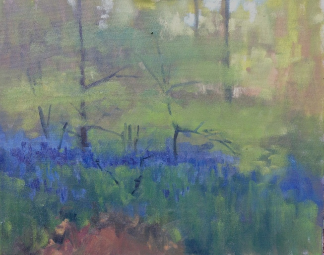 Dark bluebells