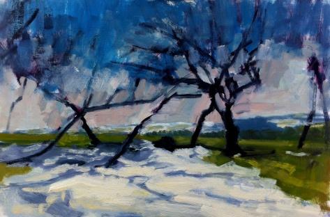 Snow hedgerow