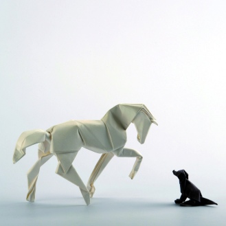 Diagrams horse:https://vallebird.files.wordpress.com/2014/05/new-horse-diagrams.pdf dog: https://vallebird.files.wordpress.com/2014/05/seated-dog.pdf