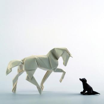 Diagrams horse:https://vallebird.files.wordpress.com/2014/05/new-horse-diagrams.pdf dog: https://vallebird.files.wordpress.com/2014/05/seated-dog.pdf