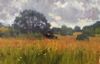 NHF meadow