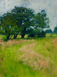 Oak and wet grass 2015
