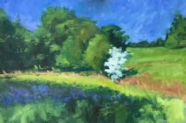 Hawthorn bluebells