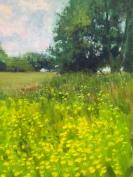 Chris's field