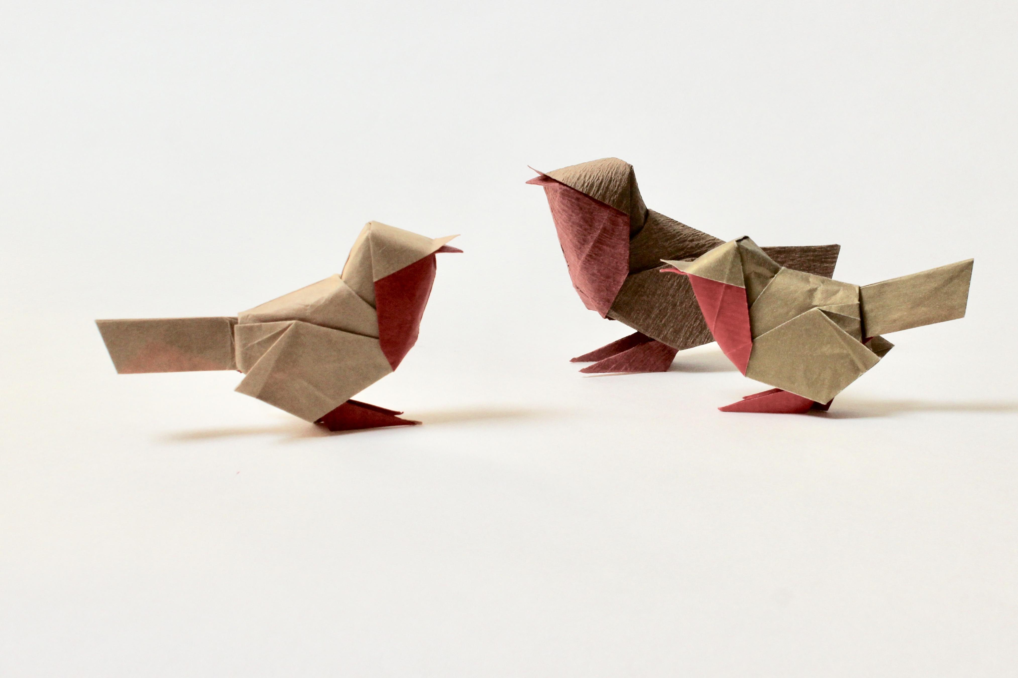 Diagrams David Brill Origami Cat Diagram
